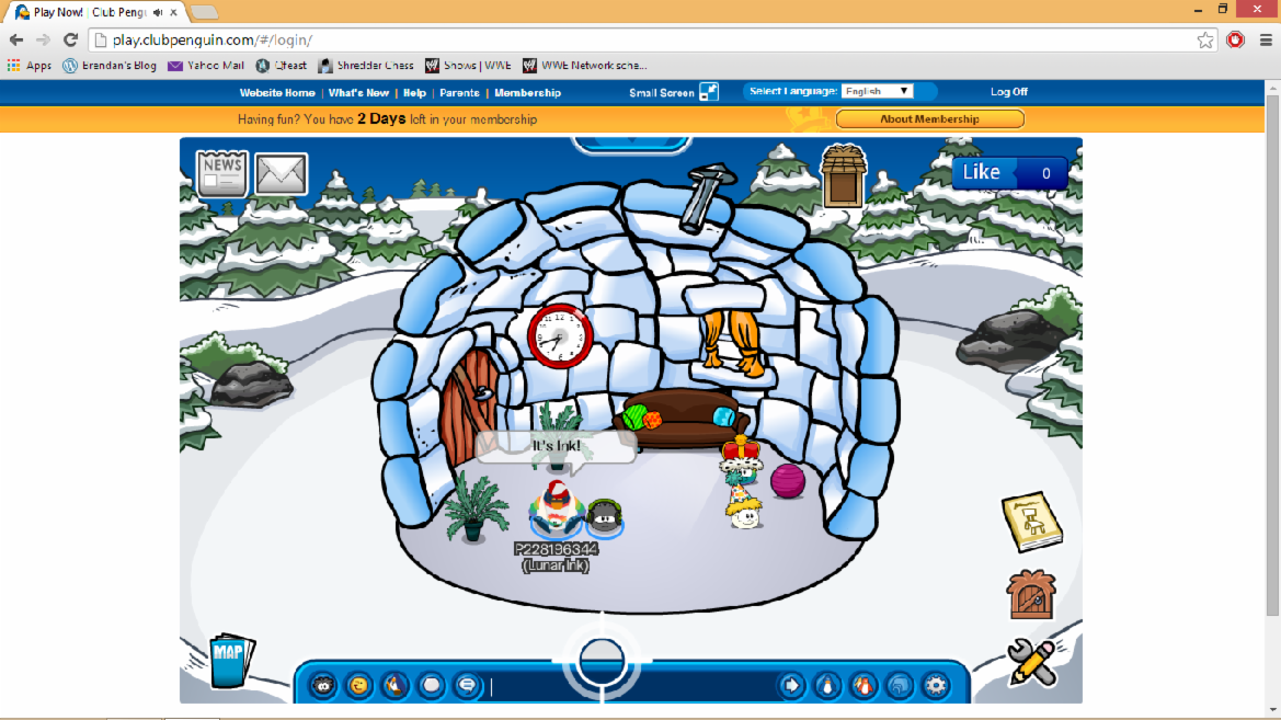 Club Penguin Fans!