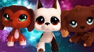 Lps Haunted /lps lovers only
