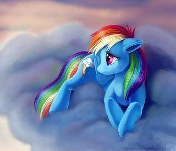 rainbow dash memebership