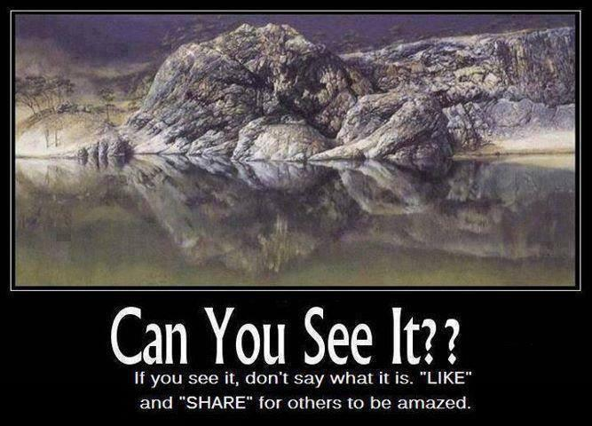 Can you see it?'s Photo