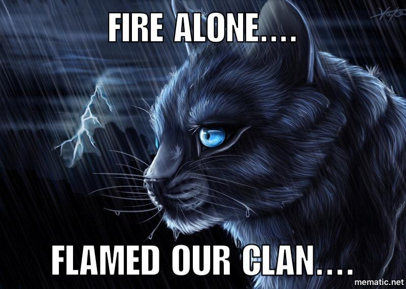 Warrior Cats!'s Photo