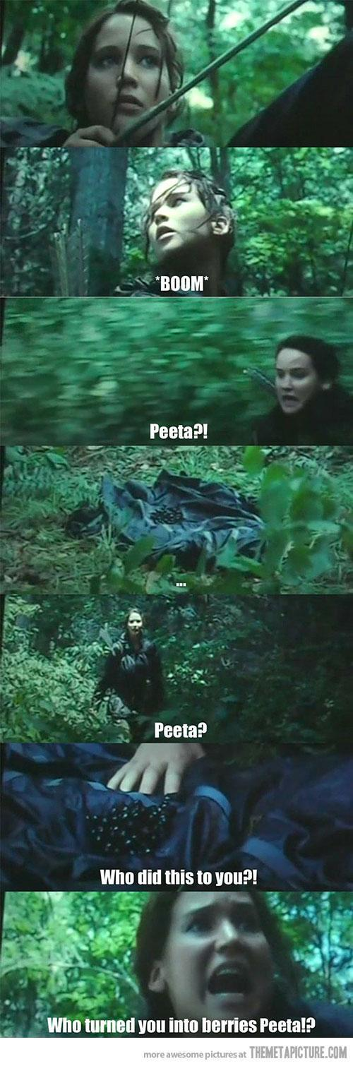 hunger games fans only's Photo