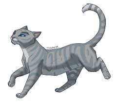 Would Sliverstream had gone to thunderclan to rasie her kits along side greystripe IF she lived?