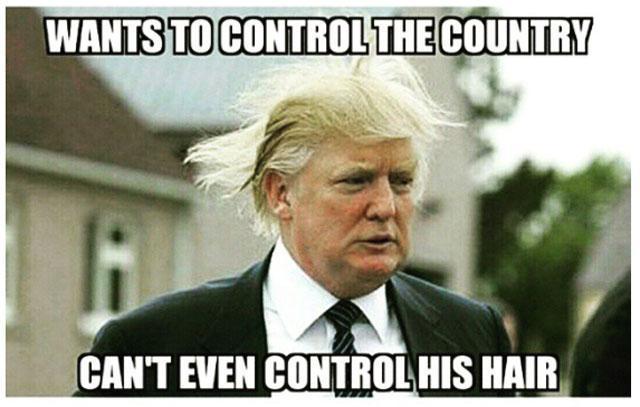 Donald Trump memes's Photo