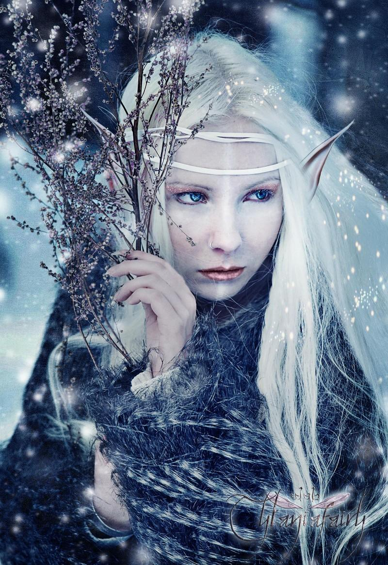 Language of the Elves
