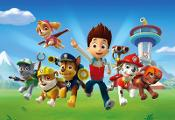 Who is your favorite PAW patrol puppy
