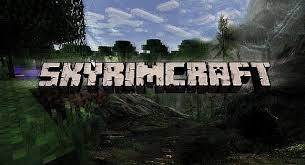 Which game do you like more: Skyrim or Minecraft?