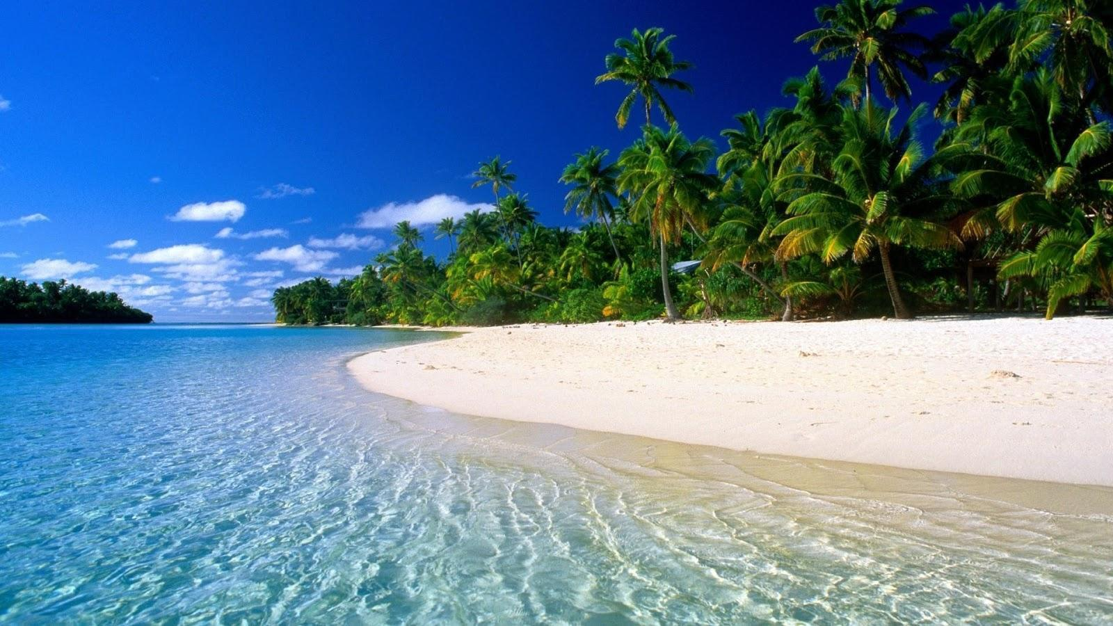 Stranded FOREVER on a deserted island, what would you prefer? Without the possibility to change afterwards