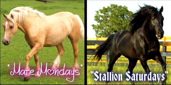 "Will you Join my Page ""LIVE CLASSES Topic:Horses"" and come to a few classes a week?"
