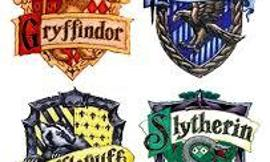 Which of these Harry Potter houses are you in?