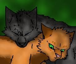 Should Squirrelflight and Ashfur be together?