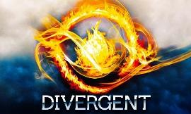 Do you like the divergent series?