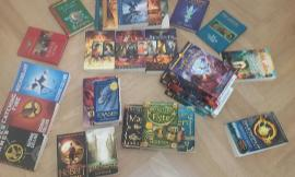 Which book series? (2)