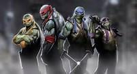 Which Ninja Turtle is your favourite .