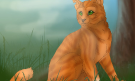Whose a better match for Squirrelflight?