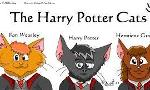 Harry Potter or Warrior Cat?