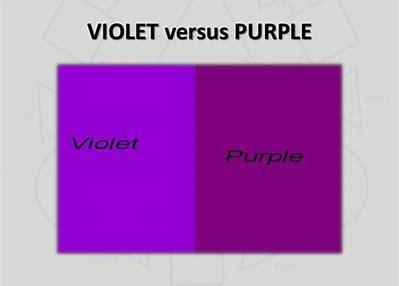 "Do you say ""purple"" or ""violet""?"