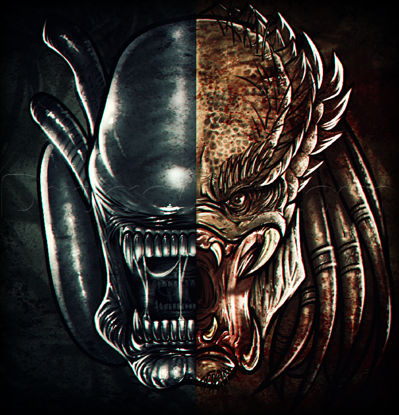 Aliens vs Predator: which do you like more?