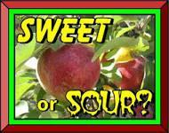 Sweet foods or sour foods?