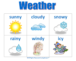 Whats your favorite weather?