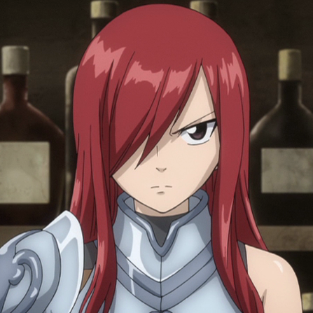 Who would be the best partner for Erza?