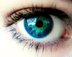 Eyes truly are windows to the soul, but they forgot to mention what type of window it was. (Would you read this story?)