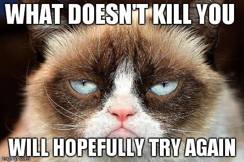 What grumpy cat meme makes you laugh more?