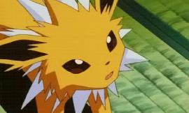 Which Pusheen? Jolteon: Y a pic of confused me?