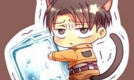 What Levi Ackerman Picutre Is Most Cuter ?