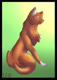 What do you think of Squirrelflight?