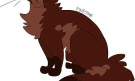 Warrior cats mapleshade or pinestar