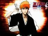 Do you like bleach the anime