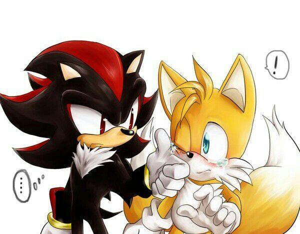 Who is better: Tails or Shadow?