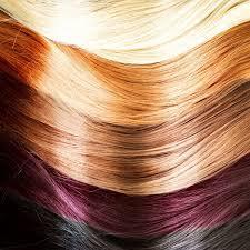 what colour hair do you have?