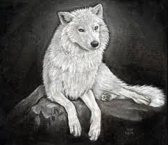 What rate (from 1 to 10) Would you give a wolf?