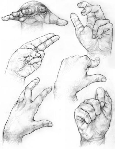 Which is Your Dominant Hand?