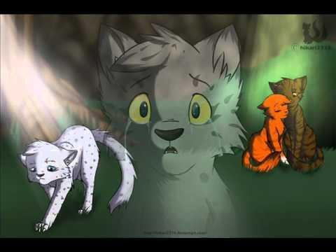 If you where squirrelflight who would you choose?