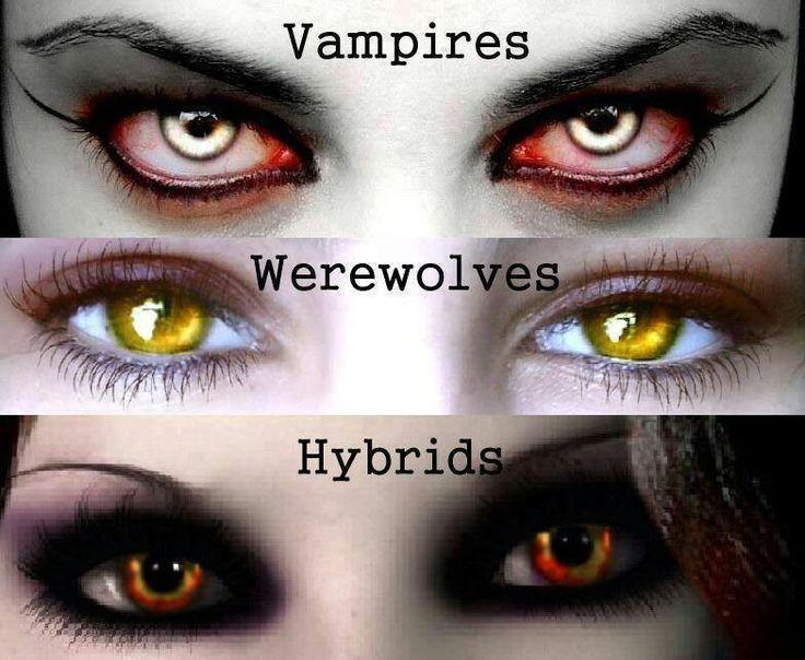 Which is better Werewolves or Vampires?