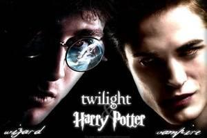 Harry Potter? or Twilight?