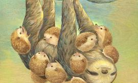 Which animal do you like more: Sloths or Hedgehogs?