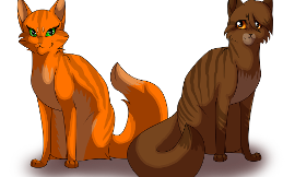 Who is more awesome from the Warriors series: Squirrelflight or Leafpool?