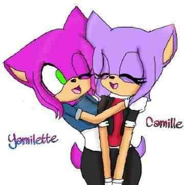 Whose Better Camille The Hedgehog Or Yamilette The Hedgehog You Decide