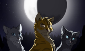 "Warrior Cats Poll- Who Has the Best Power in the ""Power of Three"" Arc?"