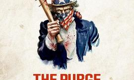 What would you do during the purge?