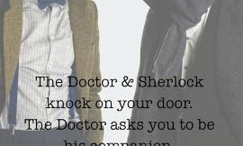 The doctor companion or sherlock's blogger what would you choose.