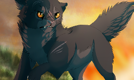Who do you think was a better mentor for yellowfang?