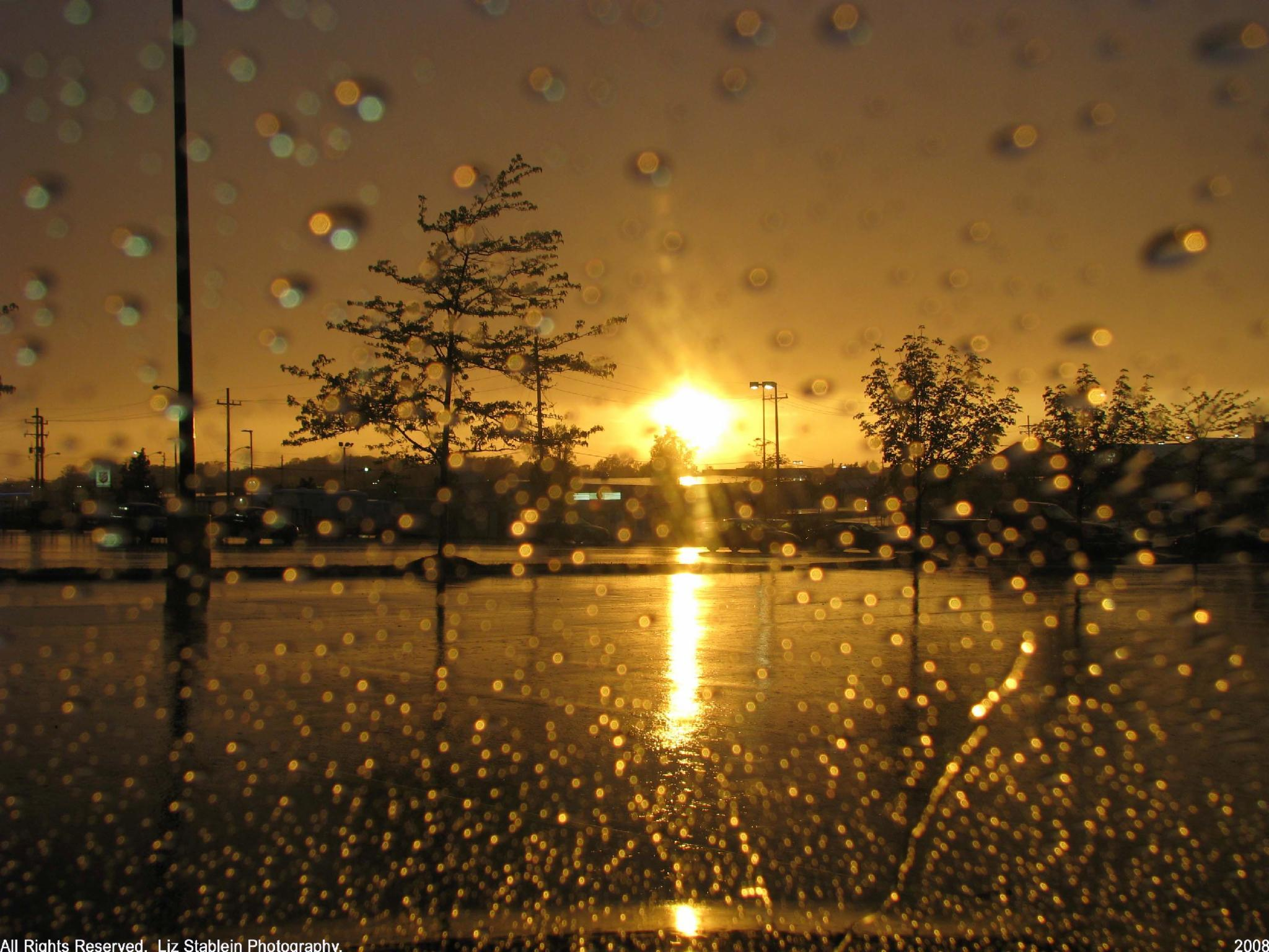 Sunny Days Or Rainy Days: Which Is Better