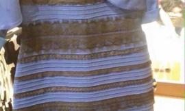 What colors do you see on this dress?