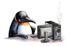 Other (if you select this you're a penguin and if you are you are highly advanced and I'm sending government officials your way)