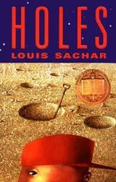 The book Holes